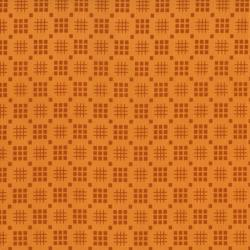 2435-021 Pie Making Day - Lattice - Orange Fabric