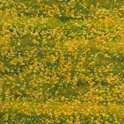 1827-002 Danscapes - Flower Fields - Yellow Fabric