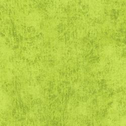 3212-032 Denim - Lime Fabric