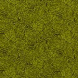 8737-007 Jinny Beyer Palette - Hens & Chicks - Lime Fabric