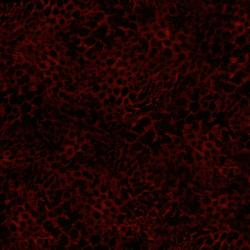 2662-006 Safari - Leopard - Red/Black Fabric