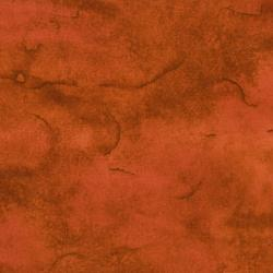 2667-002 Safari - Wash - Taracota Fabric