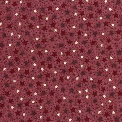3102-002 Frosty Friends - Starry Sky - Strawberry Fabric
