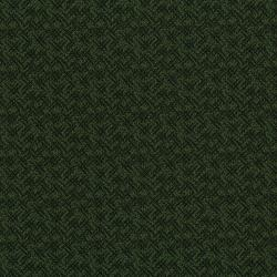 3062-001 River Song - Crosshatch - Green Fabric