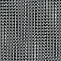 2910-001 Odds & Ends - Serpentine - White On Black Fabric