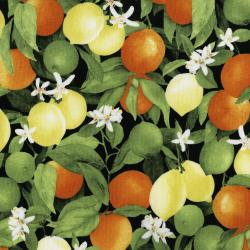 3556-001 Ambrosia Farm - Citrus Grove - Midnight Fabric