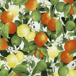 3556-002 Ambrosia Farm - Citrus Grove - Morning Light Fabric