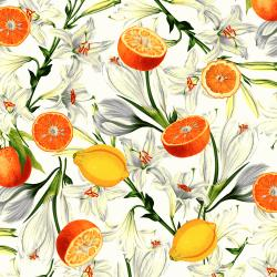 RJ1400-VA1 Citrus Garden - Lilies with Citrus - Vanilla Fabric
