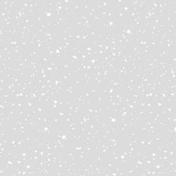 RJ1410-WG7 Confetti - Confetti - White On Gray Fabric