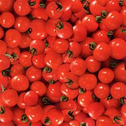 0108-001 Farmer's Market - Cherrie Tomato - Red Fabric