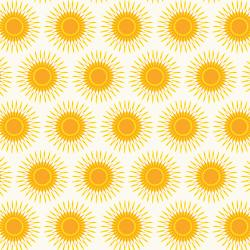 RJ1903-MO2 Lil' Bit Country - Sunny Days - Morning Fabric