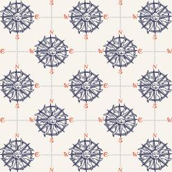 RJ2302-AT1 Smooth Seas - Compass - Atlantic Fabric