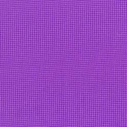 3033-002 Monster Trucks - Monster Tooth - Purple People Eater Fabric