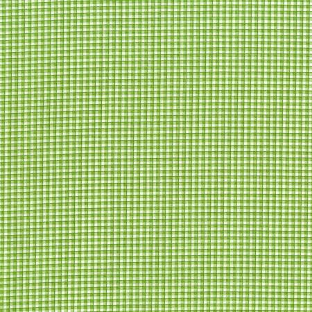 3524-002 Garden Club - Gingham - Grass Fabric